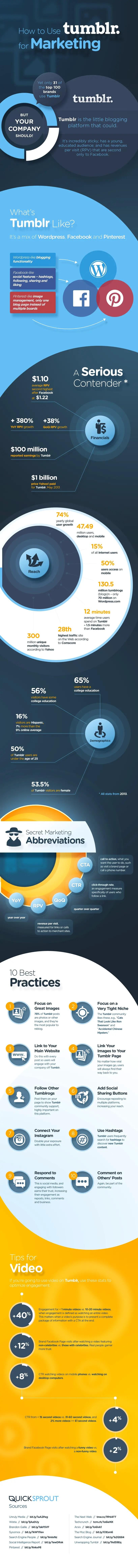 wersm_tumblr_marketing_infographic