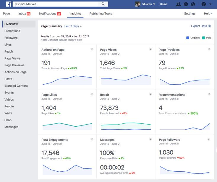 wersm facebook new page insights