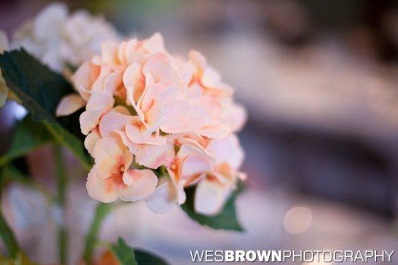 0150_4571_20110730_Kernstock_Wedding