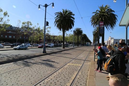 San Fran Pier 39-6934