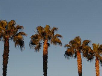 San Diego Boardwalk-08130