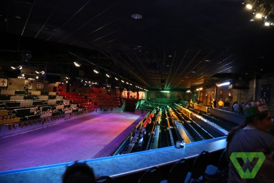 Medieval Times-7315