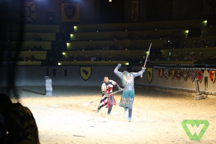 Medieval Times-7397