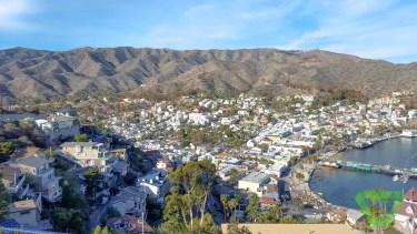 Avalon City, Catalina