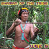 Shaman Of The Tribe