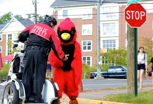 Both public safety and Cardinal getting down and dirty