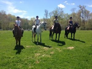 wesleying equestrian