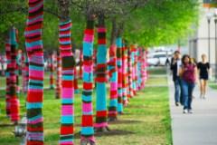 yarn bombing photo
