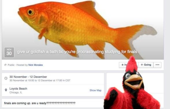 bathe ur goldfish
