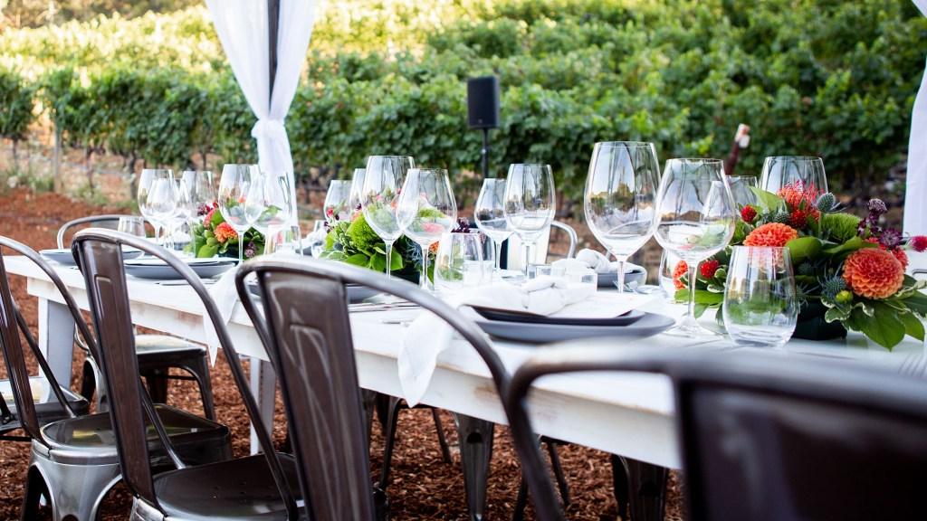 Bordeaux vs. Burgundy Glass