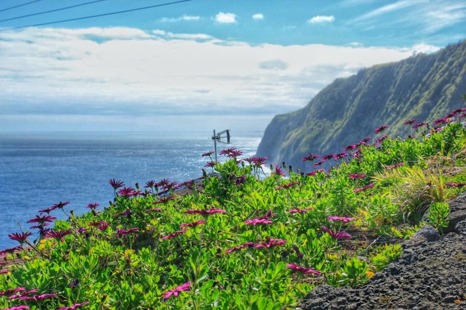 Ponta do Arnel - w drodze