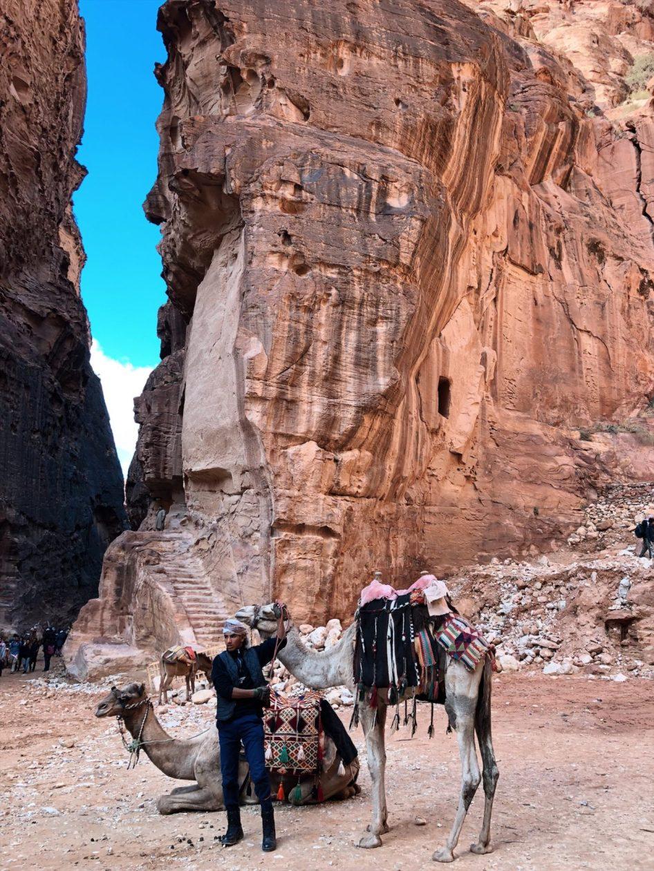 Wycieczka wielbłądem Petra Jordania