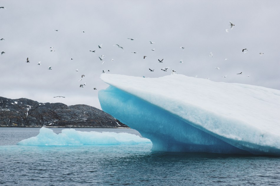 lodowce Grenlandia8.JPG