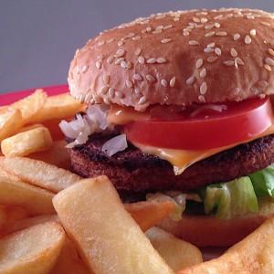 Vegetarische-cheeseburger303