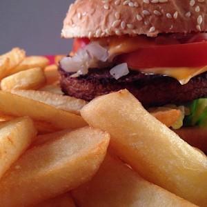 Vegetarische-cheeseburger304