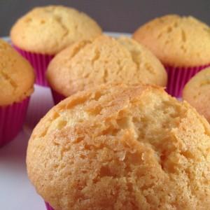 vanillamuffins348