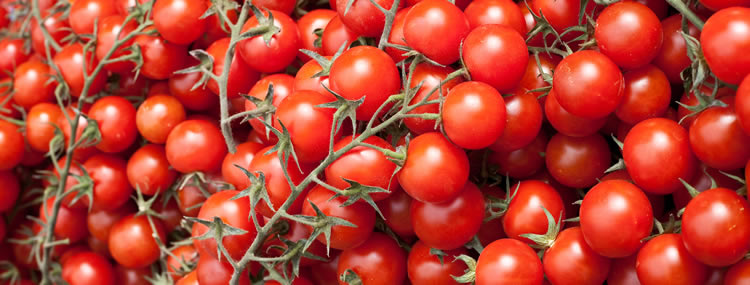 cherrytomaatjes