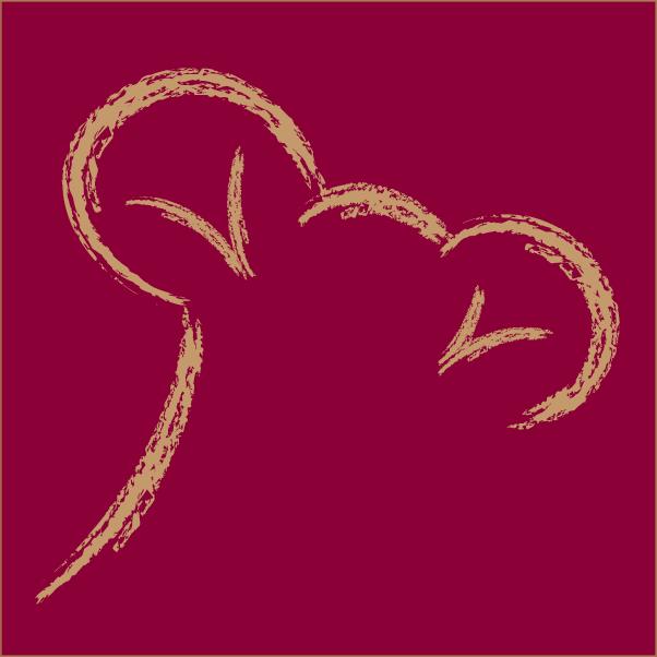 Wessalicious favicon rood met bruine koksmuts