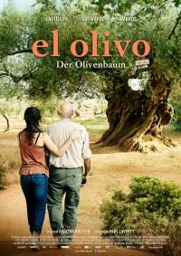 El Olivo - Ein Olivenbaum