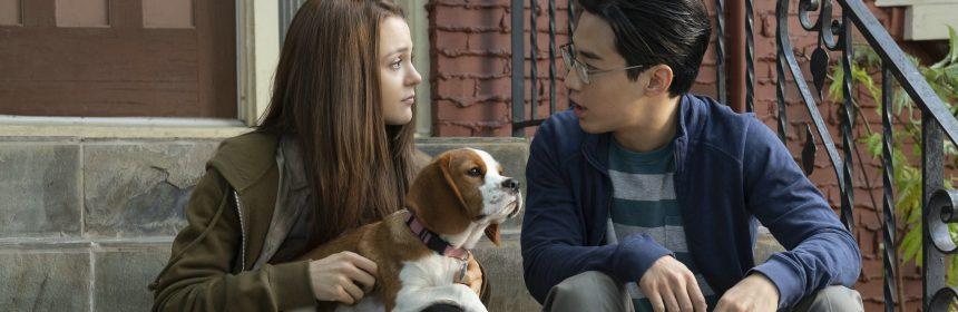 Bailey 2 Ein Hund Kehrt Zurück Wessels Filmkritikcom