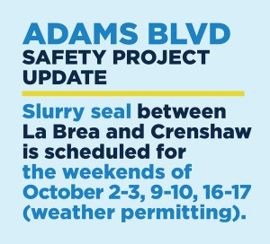 Adams Blvd Safety Project October 2021 English