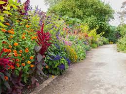 Celebrate Autumn Colour at Oxford Arboretum