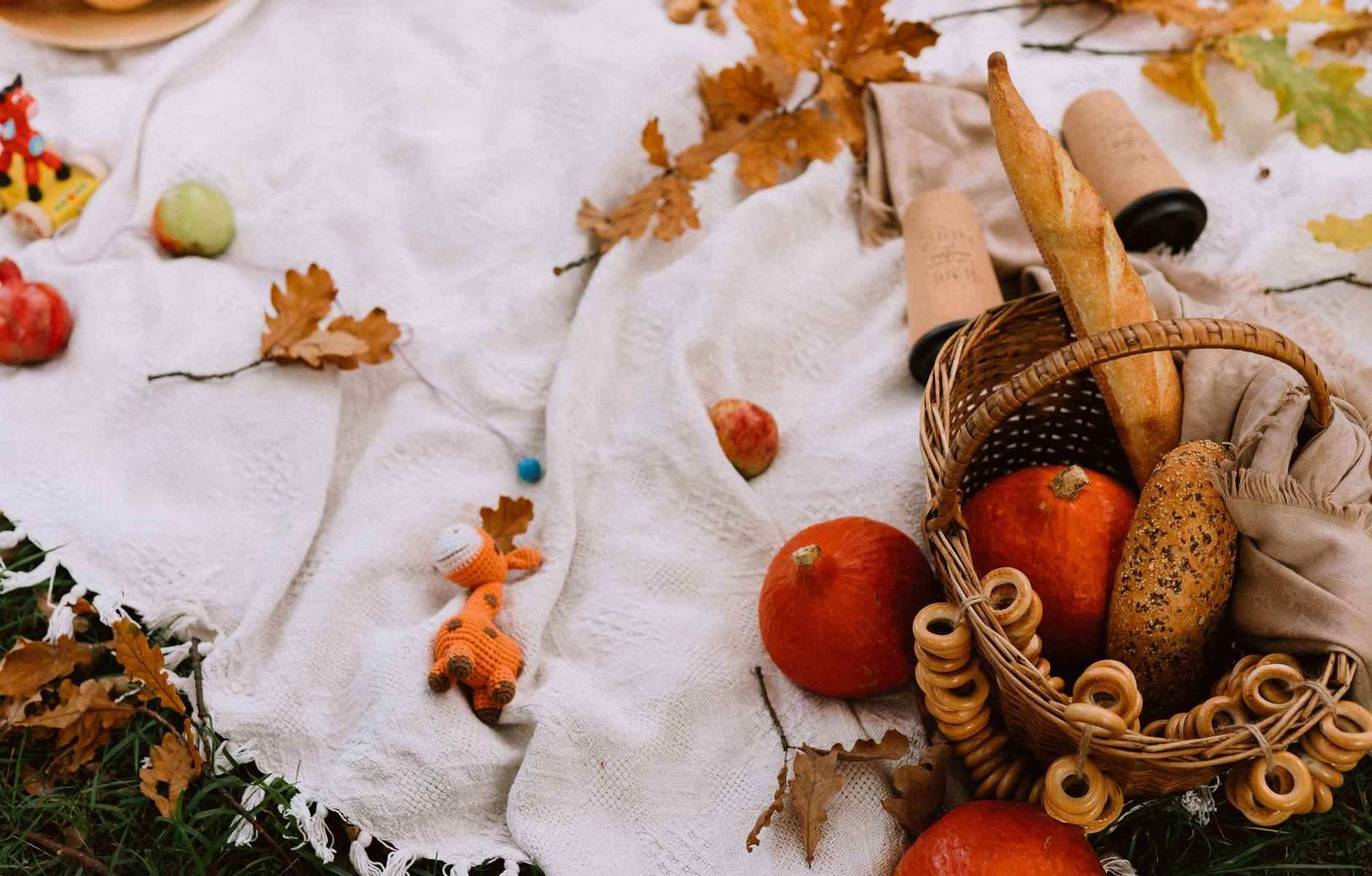 basket with bread and squashes placed on blanket with scattered autumn leaves in nature