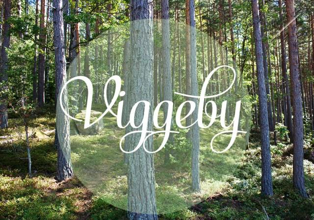 viggeby7