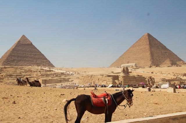 Cairo35