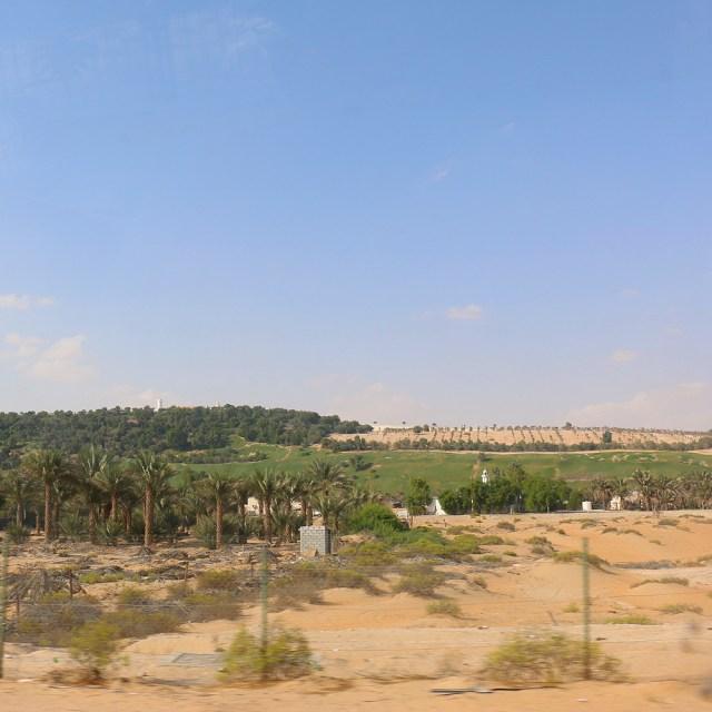 Liwa Oasis, Liwa Desert