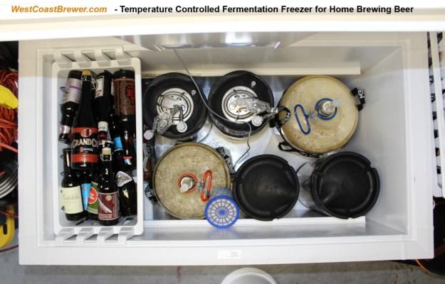 Home Brewing Beer Fermentation Freezer