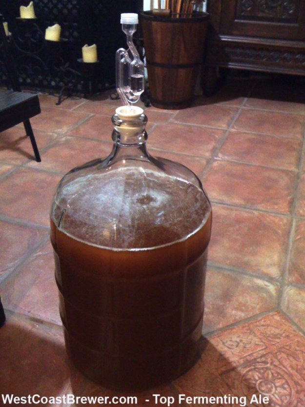 Top Fermenting Ale - Beer