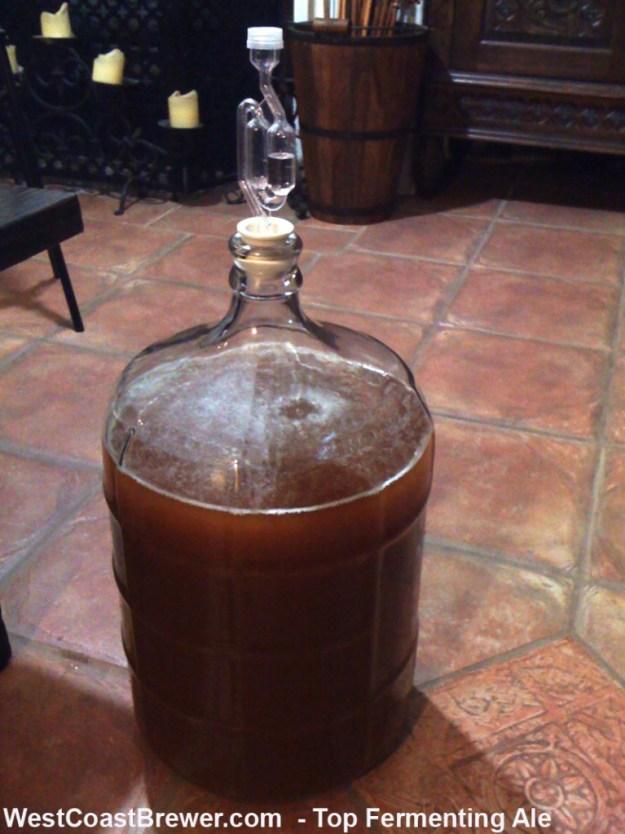 Top Fermenting Ale - Beer