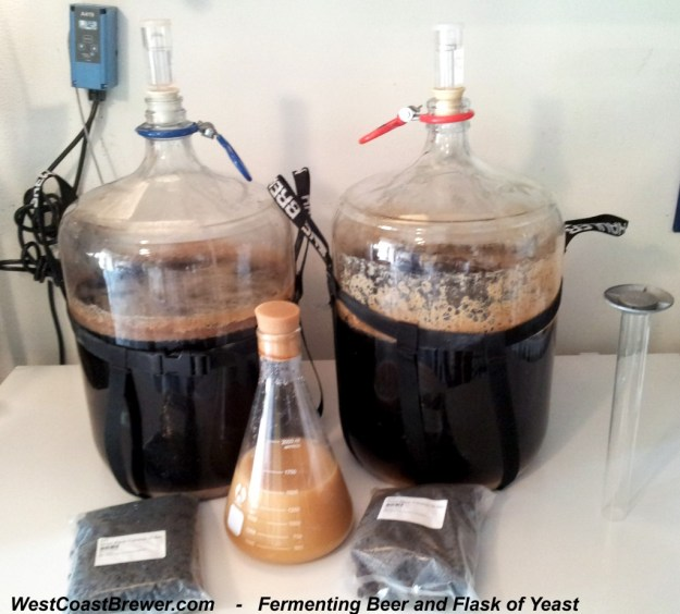 Yeast and Fermenting Beer