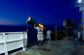 Deploying the Bongo net, early in the morning when zooplankton are in the upper part of the water column. Photo credit: Katie Douglas