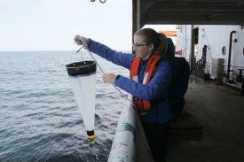 Spencer Showalter deploys a net designed to catch algae, in search of toxic Pseudo-nitzchia. Photo Credit: Meghan Shea