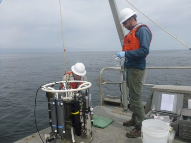 NOAA Corps Lieutenant Justin Ellis, Captain of the R/V Tatoosh (standing), and Liam Antrim (hard hat) collecting water samples from Niskin bottles on the OCNMS rosette. Photo Credit: Lieutenant JG Alisha Friel, OCNMS/NOAA Corps.