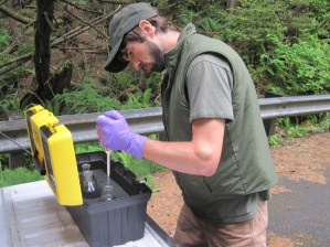 Adam Pfleeger preserving a seawater sample from Browns Point, ONP. Photo credit: Carter Urnes; NPS