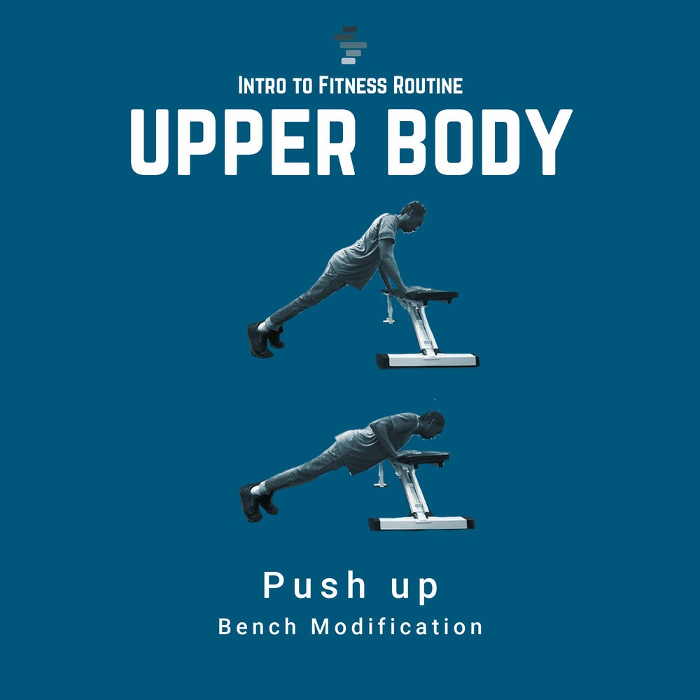 Push Up Bench Modification