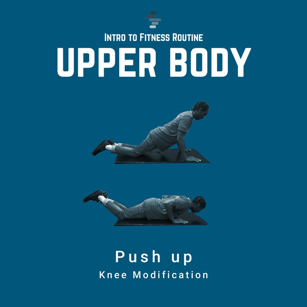 Push Up Knee Modification