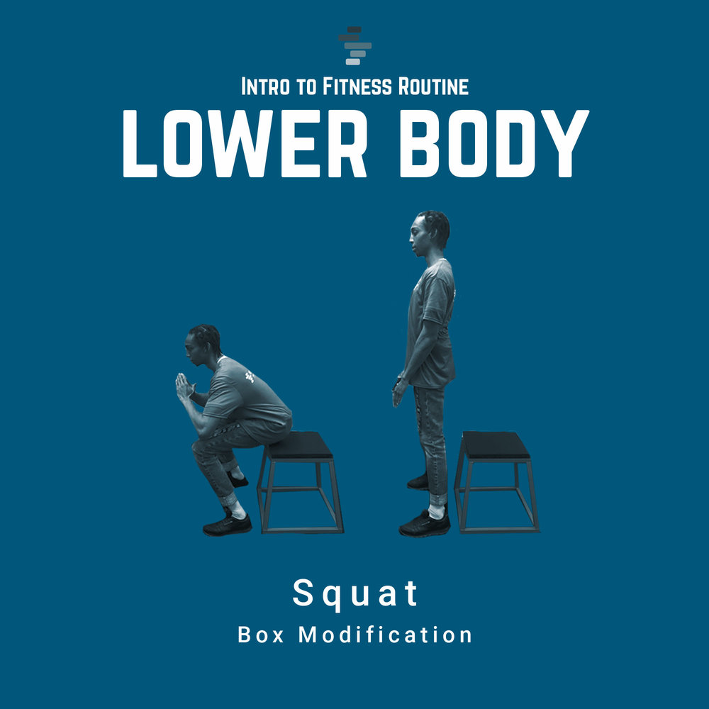 Squat with Box Modification