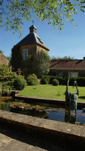 Lawn and pond