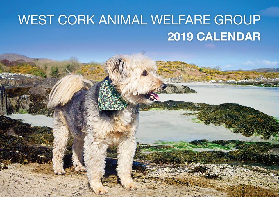 West Cork Animals