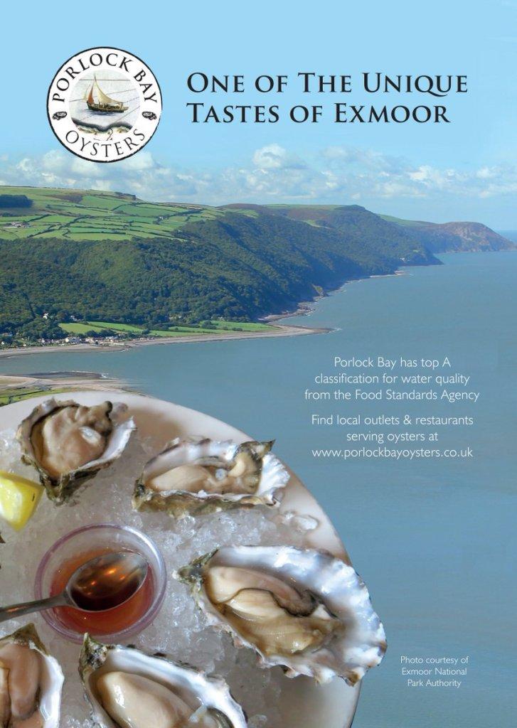 Porlock bay oyster link