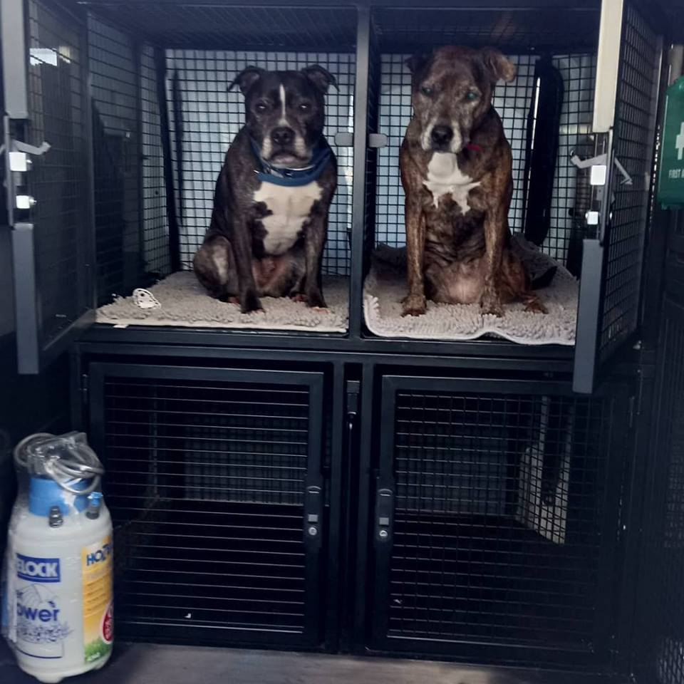Bark and play bespoke dog cages