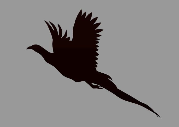 Pheasant weathervane