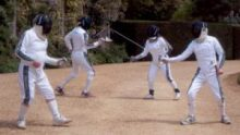 Fencing at Ampfield ( photo: Janet Turner)