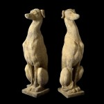 sitting greyhounds