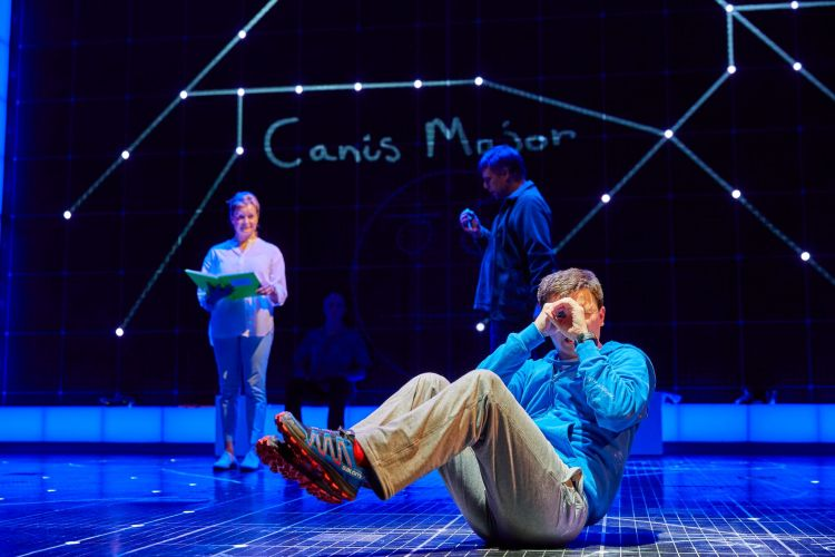The Curious Incident of the Dog in the Night-Time at the Piccadilly Theatre
