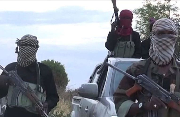 Boko Haram Fighters Control Communities In Eight Wards In Niger State – Council Chairman